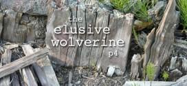 The Elusive Wolverine (p4)